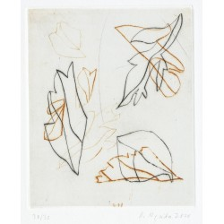 copy of Rainer Nepita,...
